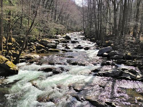 bigcreek greatsmokymountainsnationalpark hike iphone nc smokies stream trail water winter wnc