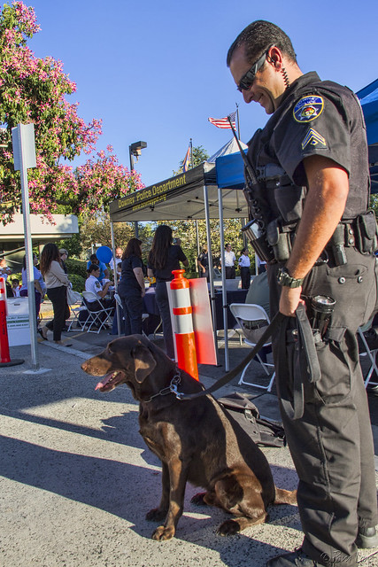 Downey 2nd Annual National Night Out police dog