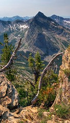 Cabinet Mountains Wilderness, Montana