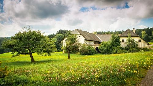 Alter Bauernhof in Amesschlag bei Waxenberg