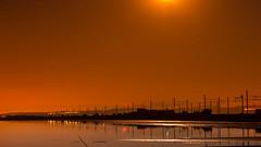 Nocturne sous la lune dorée