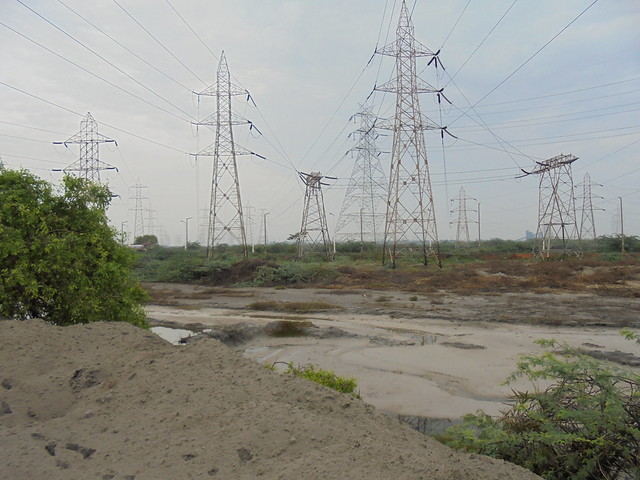 Ash from the Ennore thermal power station is being illegally dumped on the sides of the road and into the Buckingham canal as well. This has led to a part of the canal solidifying.