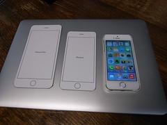iPhone 6 とPlus(型紙)