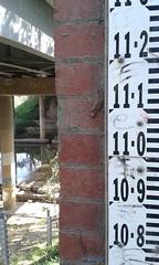 Flood gauge at Banksia Street bridge