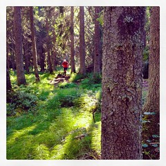 #trailrunning 25km