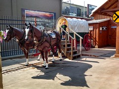 Covered Wagon at Wall Drug Store