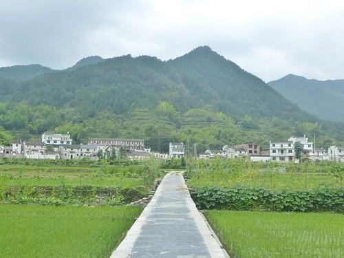 Jiangxi-Wuyuan-Montagnes et lac (8)