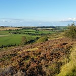 Hedleyhope Fell 2014-09-07