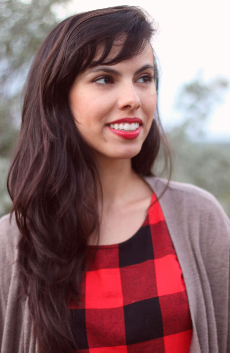 buffalo plaid red dress, austin texas style blogger, austin fashion blogger, austin texas fashion blog