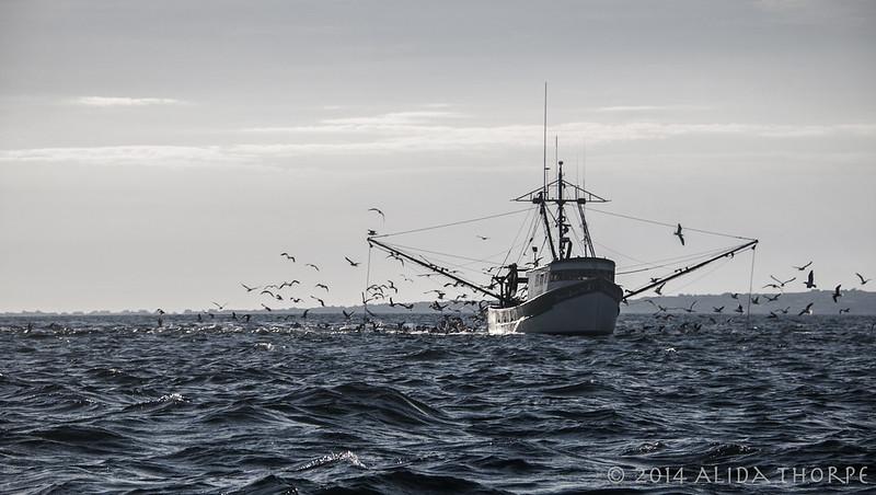 fishing off Block Island