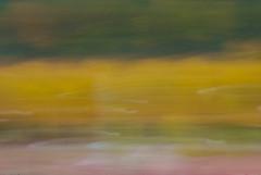 Autumn Passing in a Blur