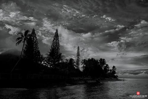 sky bw beach monochrome clouds sunrise reflections landscape island hawaii blackwhite sony scenic silhouettes maui palmtrees pacificocean tropical fullframe fx lahaina breakwall nationalgeographic waterscape lahainaharbor a7r 505frontstreet sonya7r sonyilce7r zeissfe35mmf28za