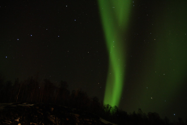 Luces del Norte en Tromso Noruega