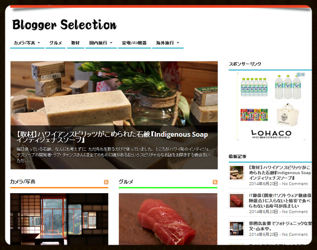 Blogger Selection