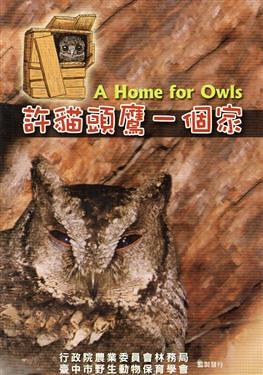 領角鴞是台灣中低海拔最常見的貓頭鷹,而現在更成為都市叢林裡的新住民。