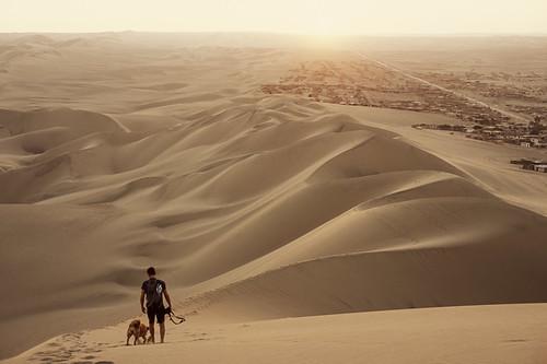 dog peru 35mm desert dunes ica huacachina agfaprecisact100 minolta7