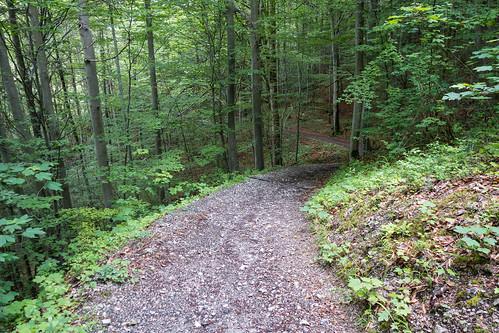 Der Hirschbergweg nach Farchant