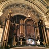 A rather large organ!