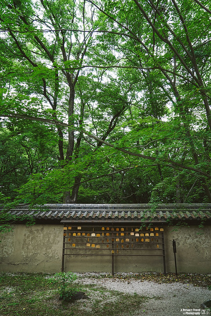 2014_Summer_SanyoArea_Japan_CH1_EP2-11