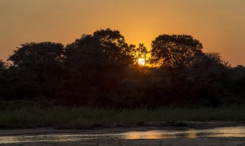 sunrise southafrica sand clear krugernationalpark mpumalanga krugerpark kruger sandriver sabisands umkumbe krugersunrise umkumbesafarilodge