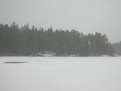 Årsjön, Tyresta National Park, Haninge, Sweden