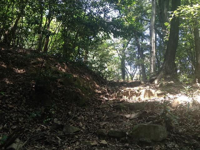 大野権現山 妙見山への石段 登山道