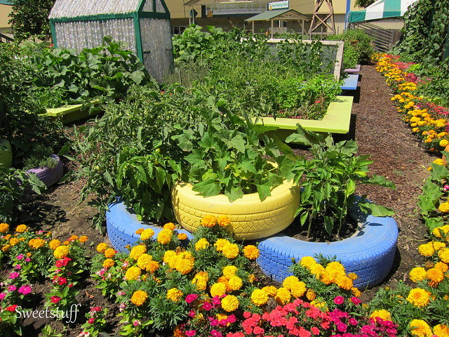Cool container gardening