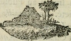 """Image from page 81 of """"Oeuvres complettes"""" (1781)"""