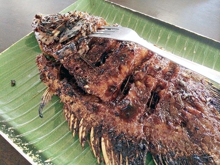fish batam indonesia