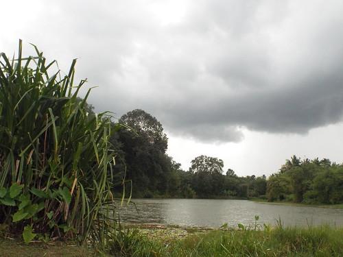 india storm clouds landscape nuvole kerala beforethestorm paesaggio kolakkodu