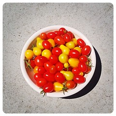 Today's tiny urban garden harvest. Mmm....