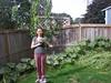 summer harvest in my back yard, summer 2014 030