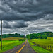'The Open Road' -- Blantyre Road Near Warrenton (VA) August 2014 by Ron Cogswell