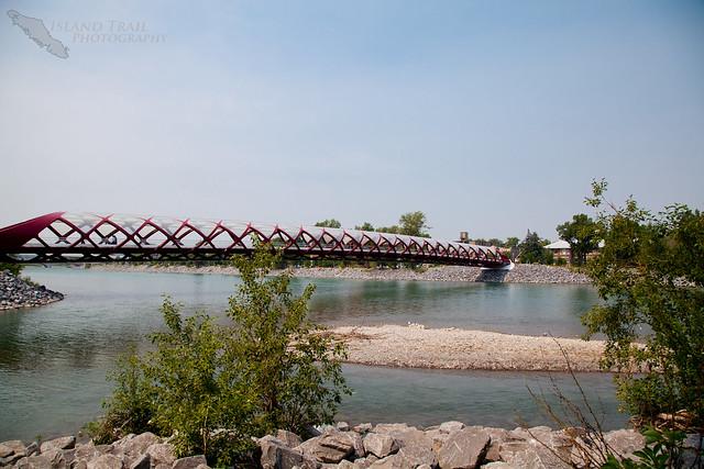 Calgary - 2014-07-17-6503