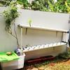 Rumah baru hydroponicku #hydroponic #berkebun  #dirumah #diy