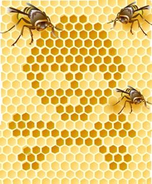 bee toxins