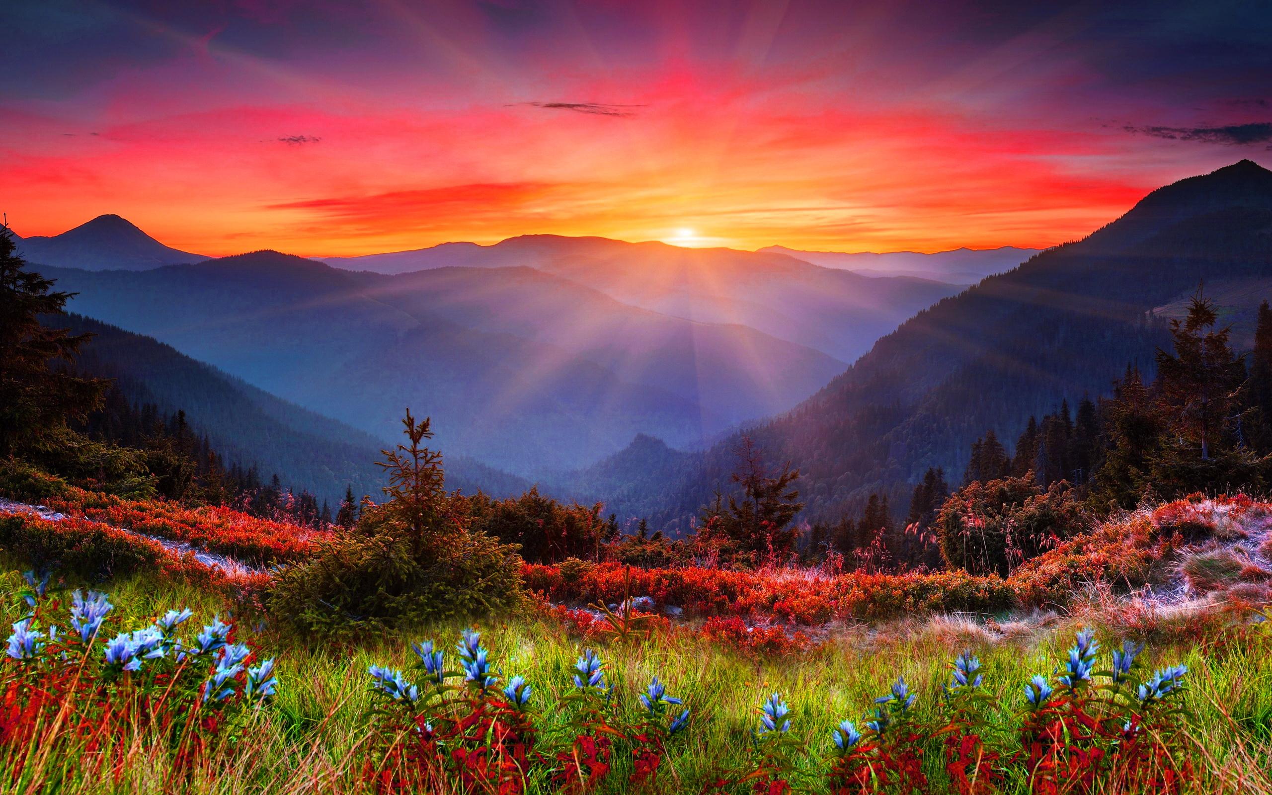 bing desktop wallpaper sunset - photo #2