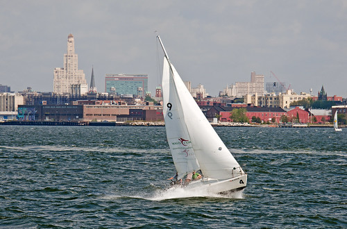 Harbor Sail