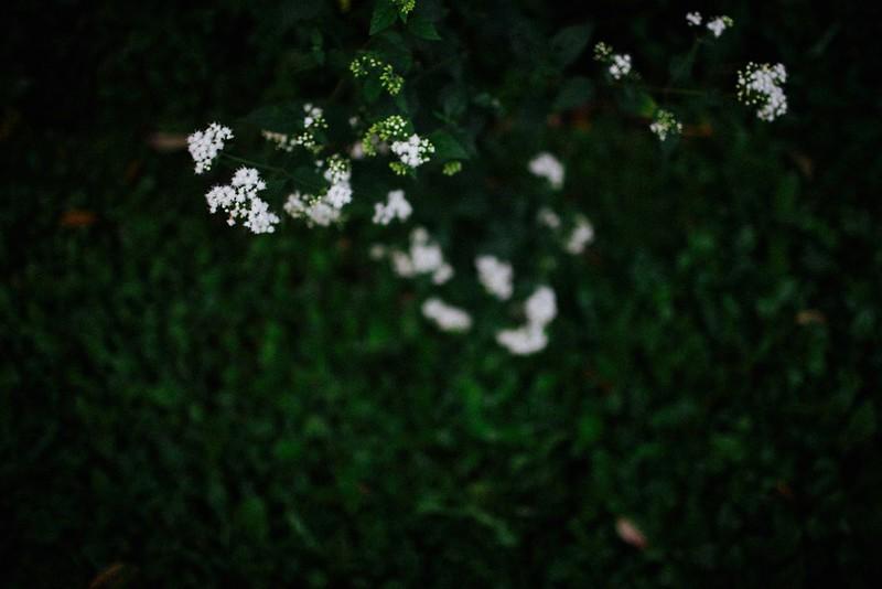 mackenziehopephotography-4803