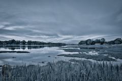 Gulf Pond