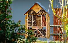 Campan : hôtel à insectes