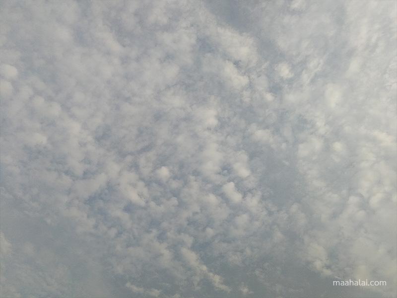 Huawei P10 Sample Image