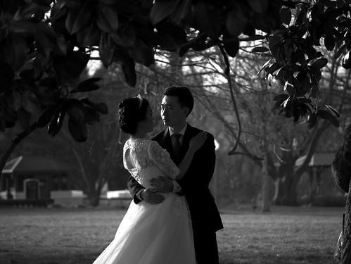 Newly weds DC