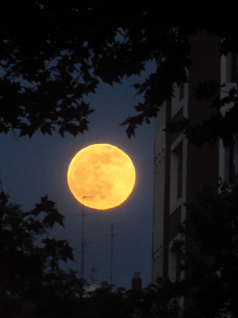 Full moon on my street