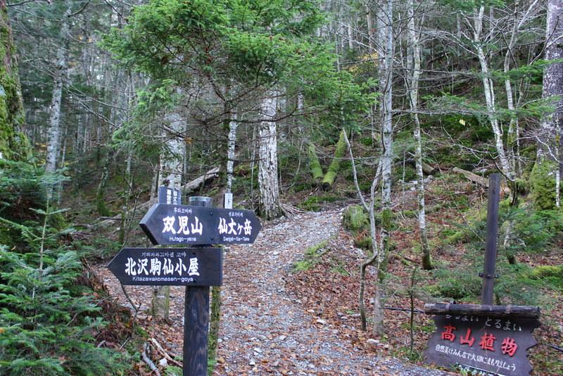20131027_仙丈ヶ岳_0016