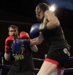 striking combat sports, professional boxing, individual sports, contact sport, sports, combat sport, muay thai, kickboxing, sanshou, punch, amateur boxing, boxing,