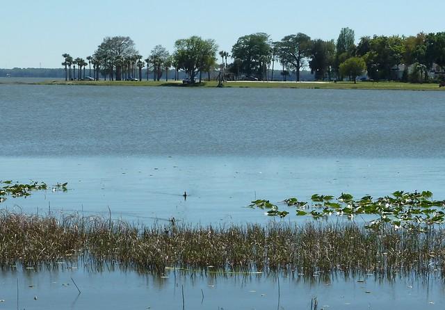 Leesburg, FL, Lake Harris