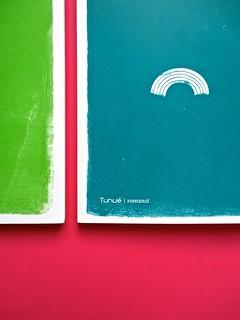 Romanzi, collana di Tunué edizioni. Progetto grafico di Tomomot; impaginazione di TunuéLab. Copertine [Peter, Barison] (part.), 2