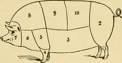 "Image from page 182 of ""Smiley's cook book and universal household guide; a comprehensive collection of recipes and useful information, pertaining to every department of housekeeping .."" (1895)"