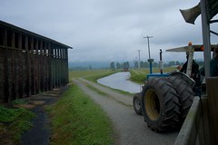 A Day in Pitt Meadows and Maple Ridge